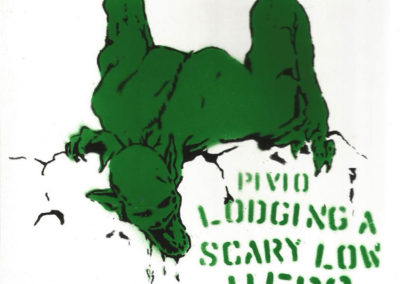 Lodging a Scary Low Hero - green and black CD cover